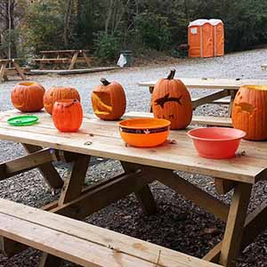 Cunningly crafted in the depths and dragged to land, the jack-o-lanterns are ready to be judged